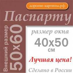 Паспарту 50х60 см №206
