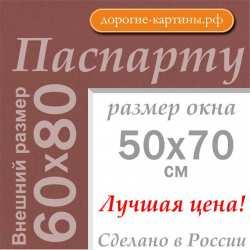 Паспарту 60х80 см (A1) №206