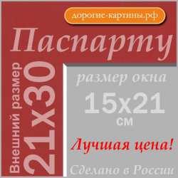 Паспарту 21х30см (А4) №60