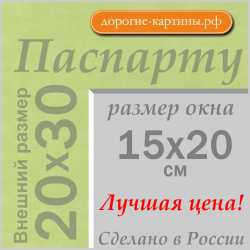 Паспарту A4 20x30 см №170
