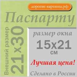 Паспарту A4 21x30 см №170