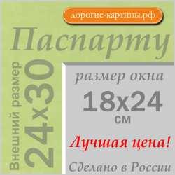 Паспарту 24x30 см №170