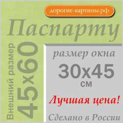 Паспарту A2 45x60 см №170