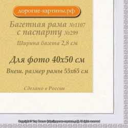 Фоторамка №1107 с паспарту для 40x50