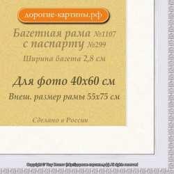 Фоторамка №1107 с паспарту для 40x60