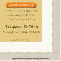 Фоторамка №1132 с паспарту для 50x70